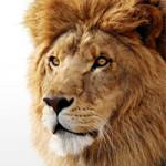 裏切った Mac OS X Lion の正しい使い方