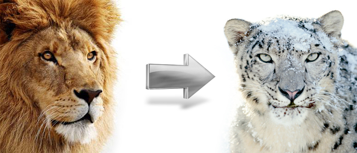 Mac OS X Lion Snow Leopard
